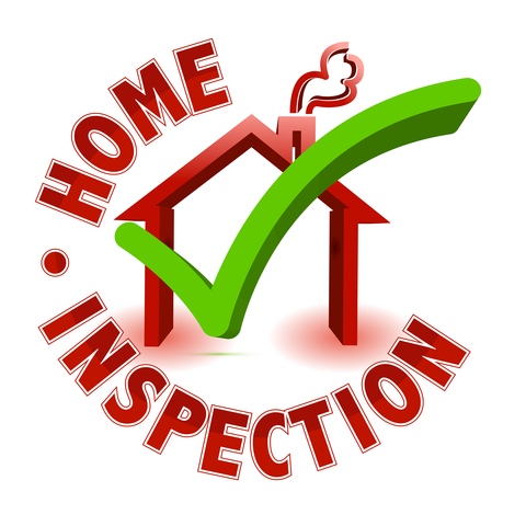 Home Mold Inspection